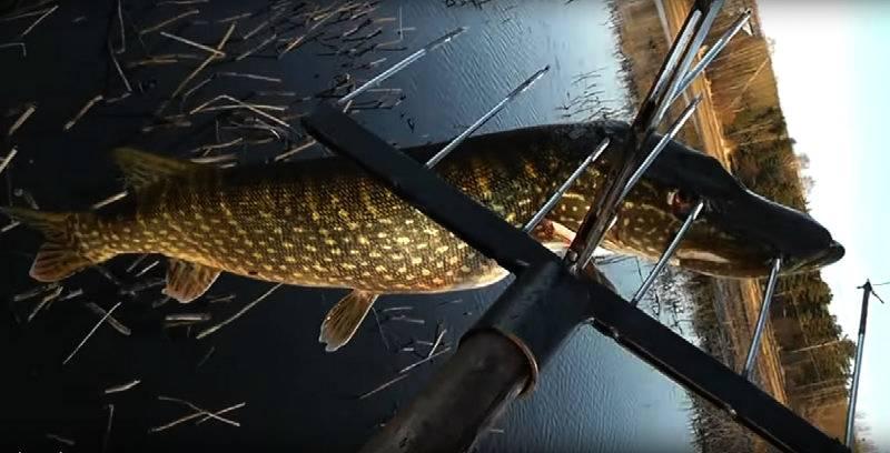 Рыбалка... (by Sky Archer)